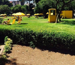 Парк района Caballitо