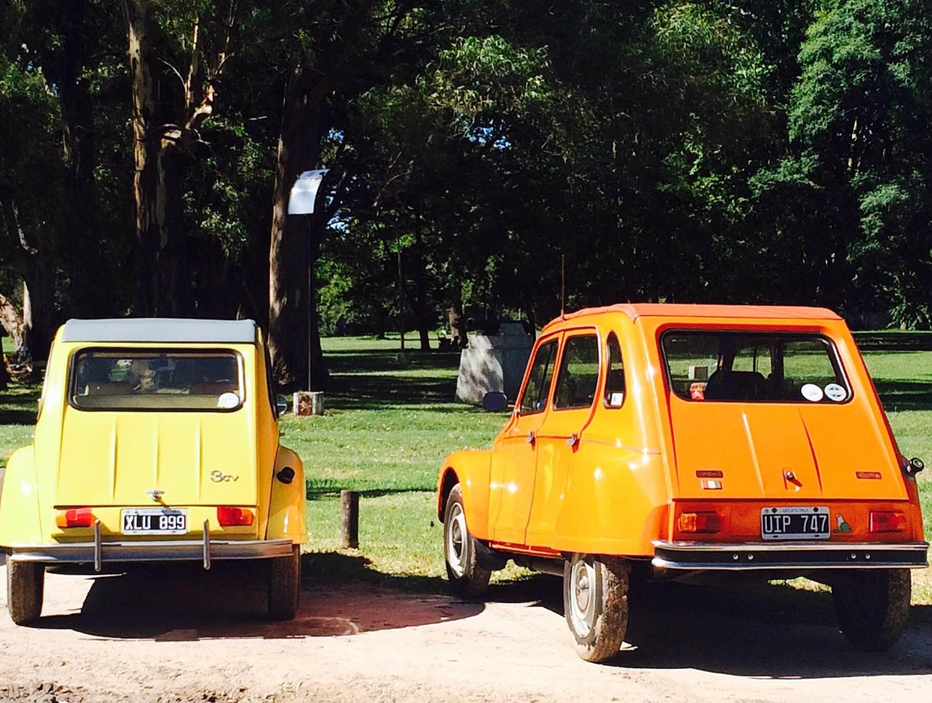 auto argentina 1